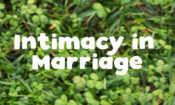 Intimacy in Marriage Seminar – April 26th